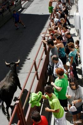 20120815114647-encierro.jpg